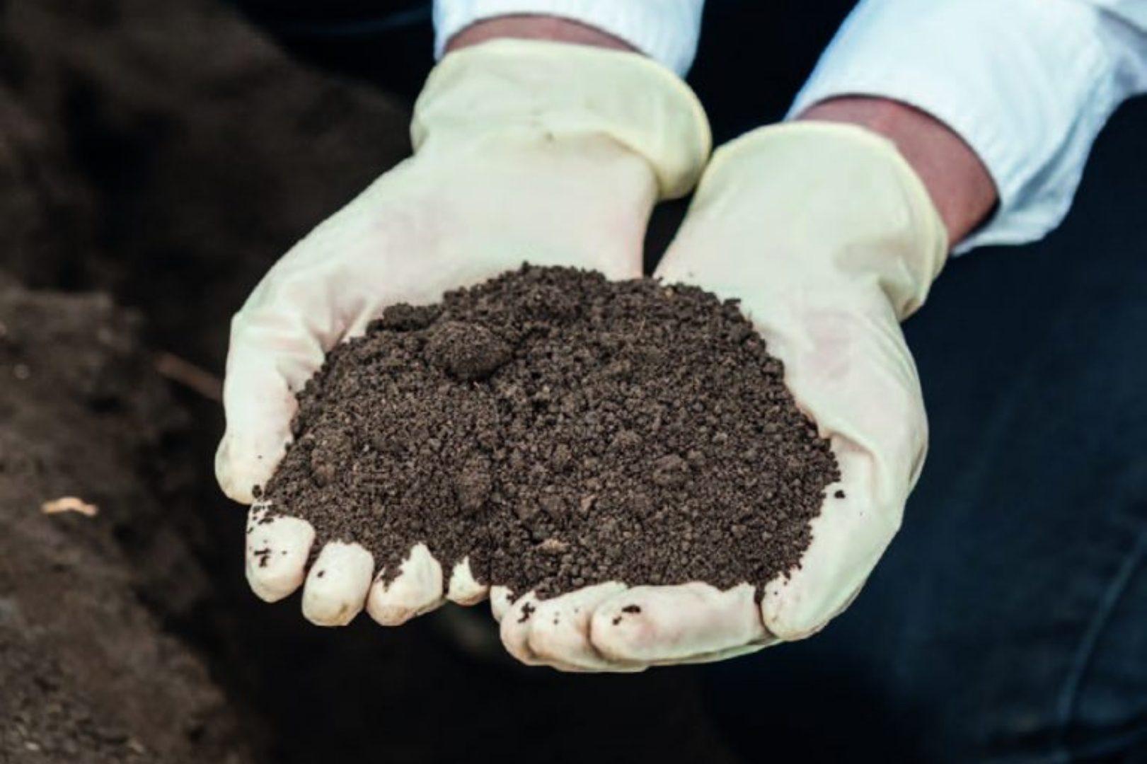 Soil testing professional